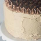 Vanilla Bean Peanut Butter Crunch Cake
