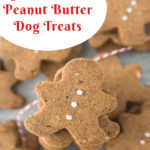 pin image for gluten free dog treats